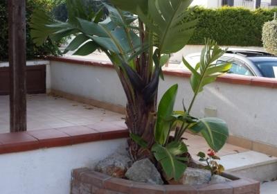 Casa Vacanze Villa Minaudo